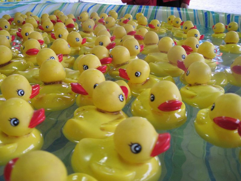 rubber duckie carnival game