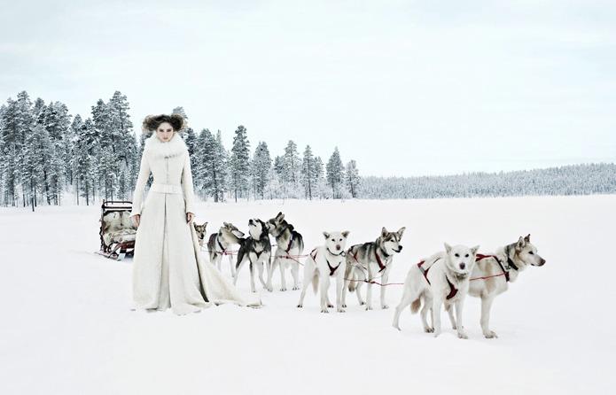 Bride wdog sled