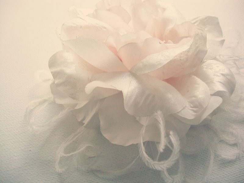 Earth friendly wedding bridal fascinator featuring white rose and ostrich feathers. Vintage Eco Weddings by Brasspaperclip.
