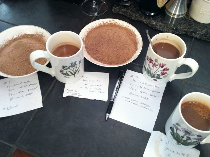 taste testing homemade hot cocoa recipes