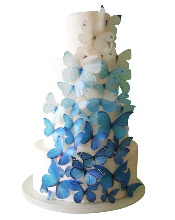 Edible butterfly cake toppers...so cool!