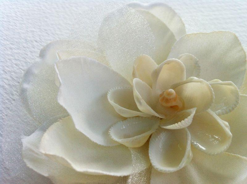 Ivory magnolia fascinator with sea shells...so pretty for a beach wedding!