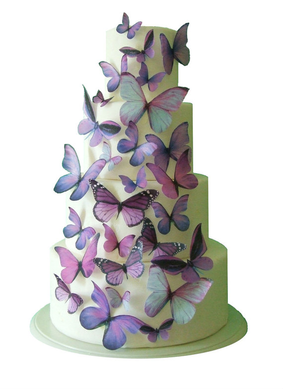 Monday Morning Blues Edible Butterfly Cake Toppers The Brass